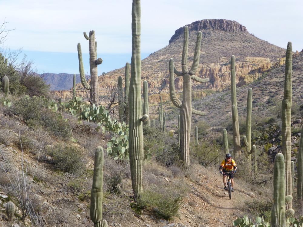 Big Country - AZ Trail Picket Post to Cochran-az-tr-pket-cochrann-11-30-13-067.jpg
