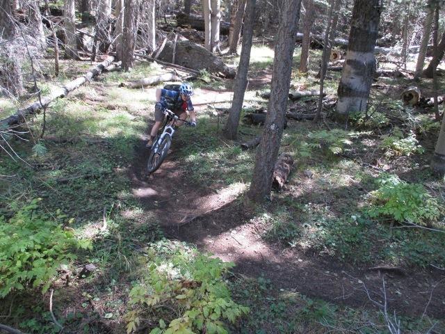 Avoid AZ Trail F - Snowbowl Rd to Moto-az-trail1.jpg