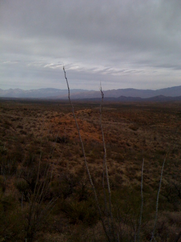 AZ trail toward Sonoita-azt4.jpg