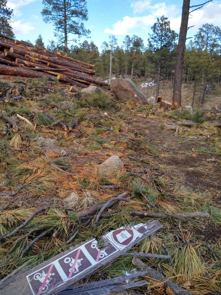 Flagstaff trail conditions.-azt_6275rd.jpg