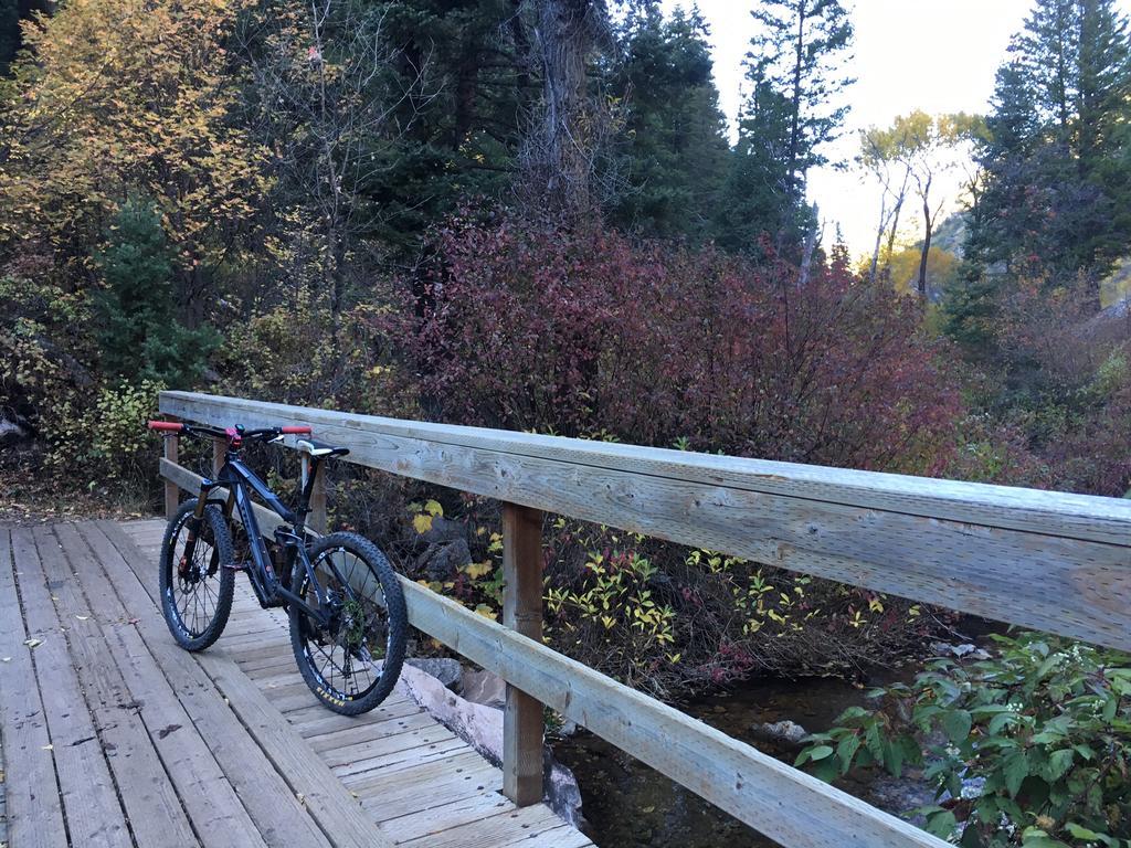 bike +  bridge pics-b4060fbf-9151-459f-a607-6aec0af44cc9.jpg
