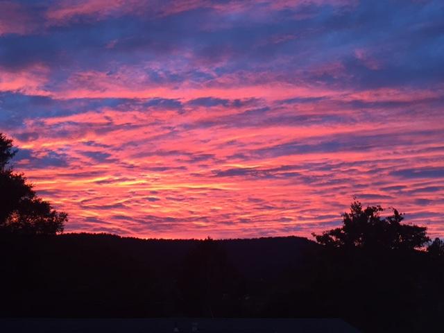 Sunrise or sunset gallery-backyard.jpg