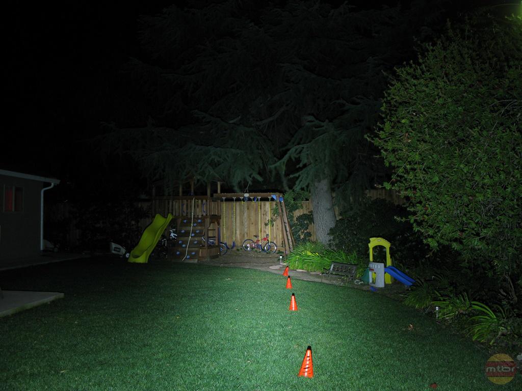 backyard-TriNewt.jpg