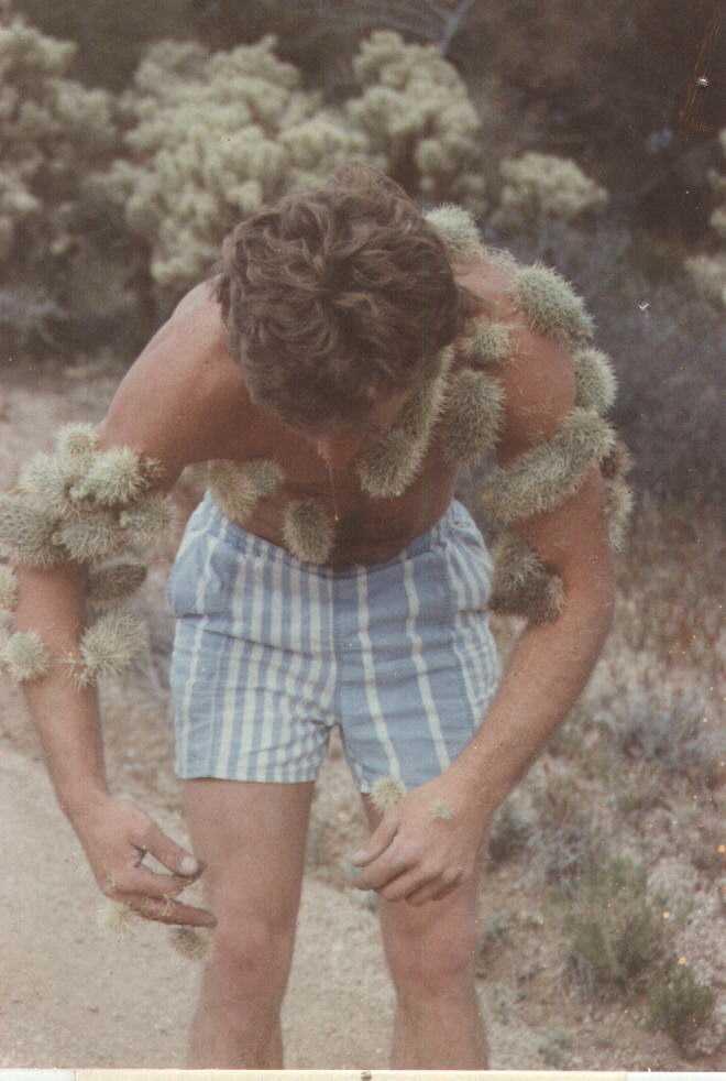 Cactus!-badday.jpg