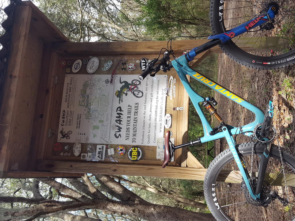 Bike + trail marker pics-balm-boyette-12-24-17.jpg