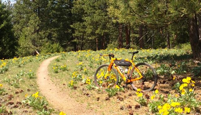 Cross Bikes on Singletrack - Post Your Photos-balsamcrux.jpg