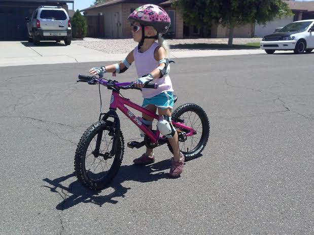 "Review of the Spawn Cycles Banshee (16"" wheeled bike)-banshee2.jpg"