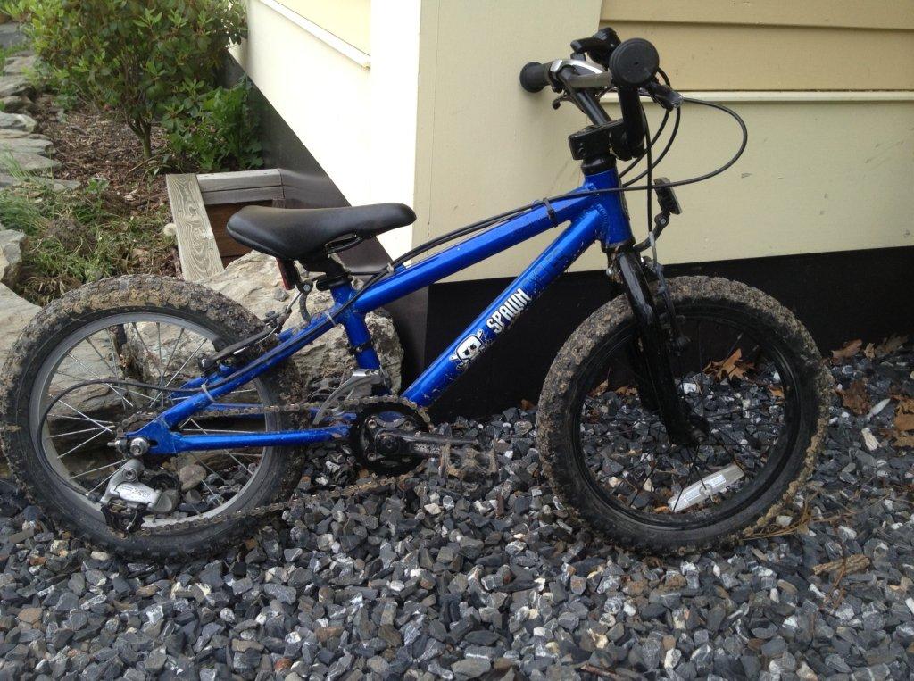 "1a026a629a4 Review of the Spawn Cycles Banshee (16"" wheeled bike)-banshee3.jpg"