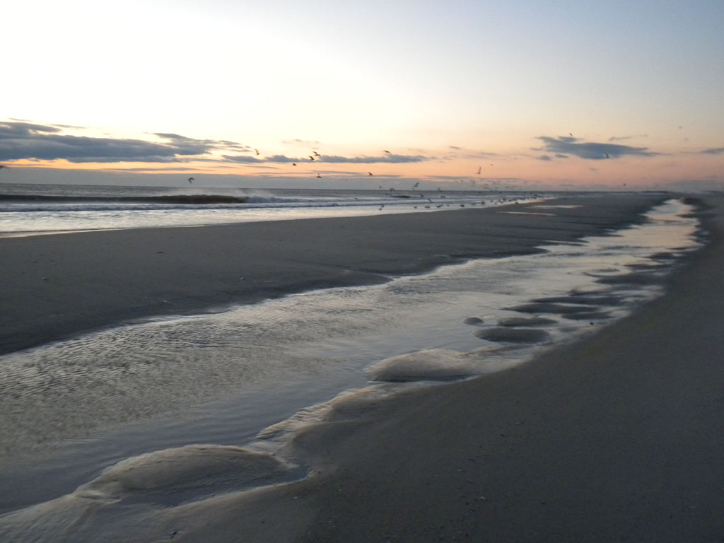 Beach/Sand riding picture thread.-barnegat3.jpg