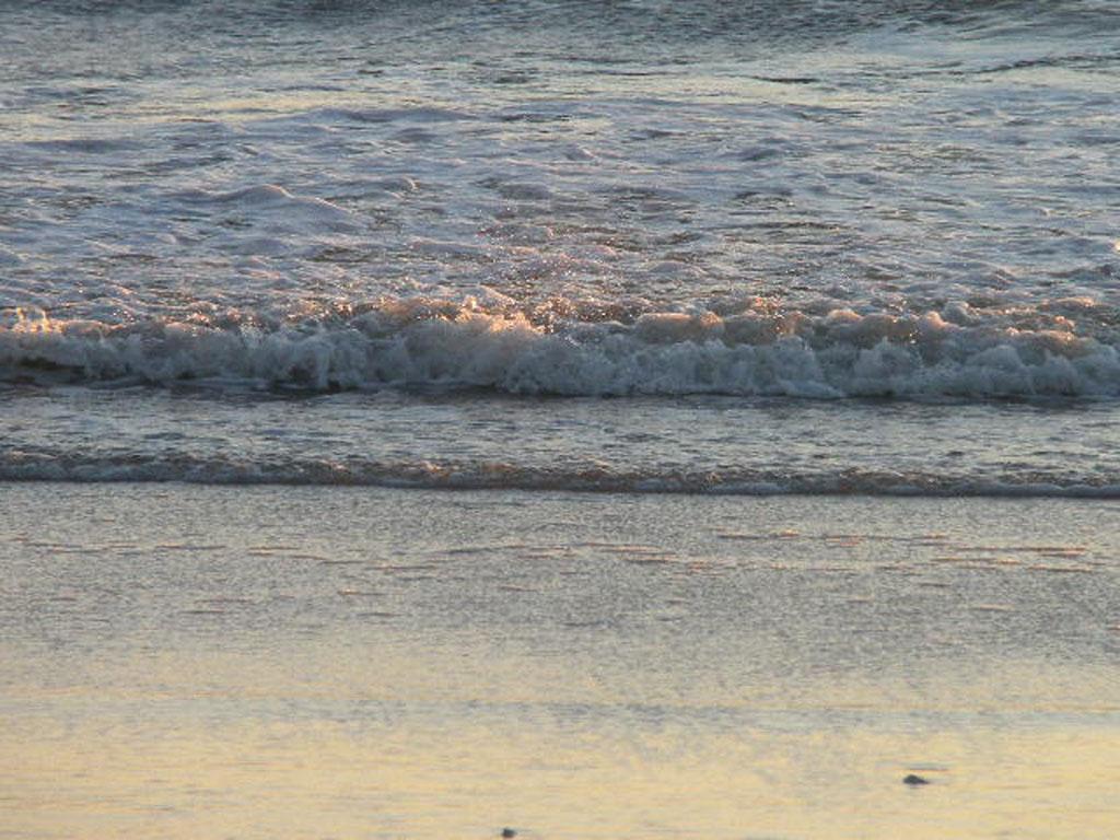 Beach/Sand riding picture thread.-barnegat6.jpg