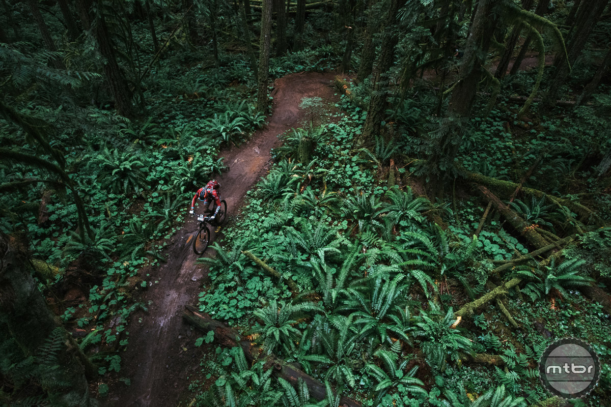 Hero Dirt is not in the BC vocabulary because it is just 'normal'. Photo by Margus Riga