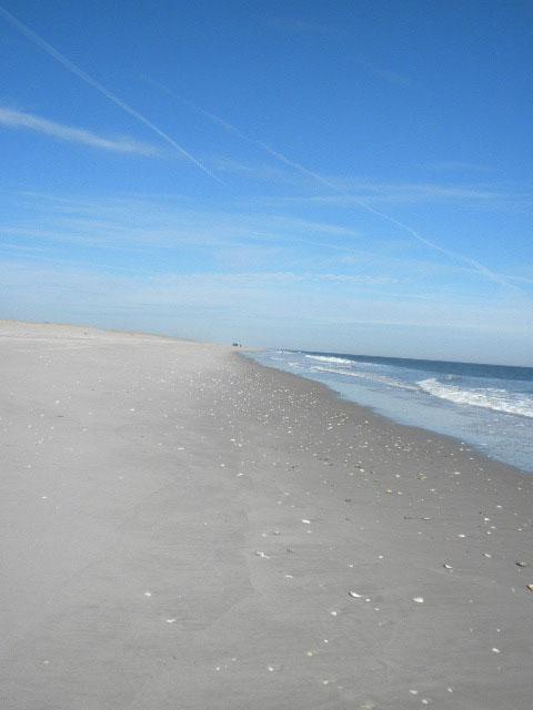 Beach/Sand riding picture thread.-beach.jpg