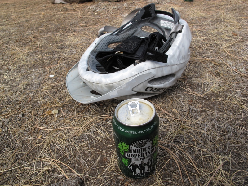 Does IPA Taste Better in a Green Can?-beanfesst-013.jpg