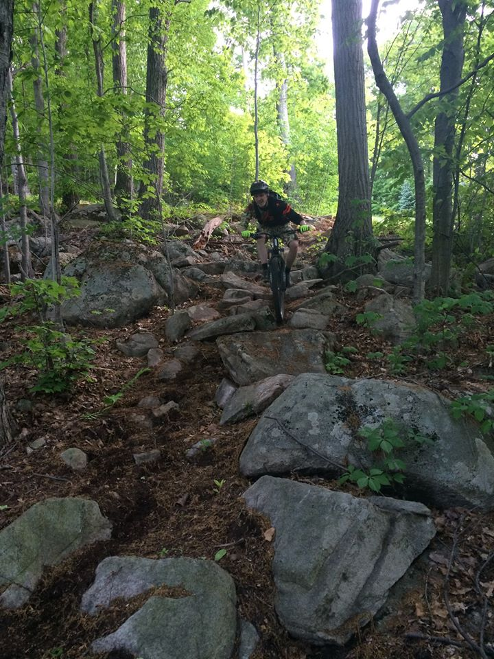 Are 27.5 better for climbing than 29 inch wheels?-bear-creek-stock.jpg