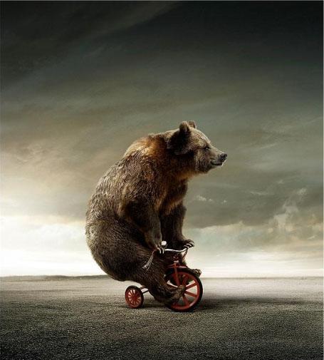 Name:  bear-on-bicycle-1.jpg Views: 1930 Size:  58.9 KB