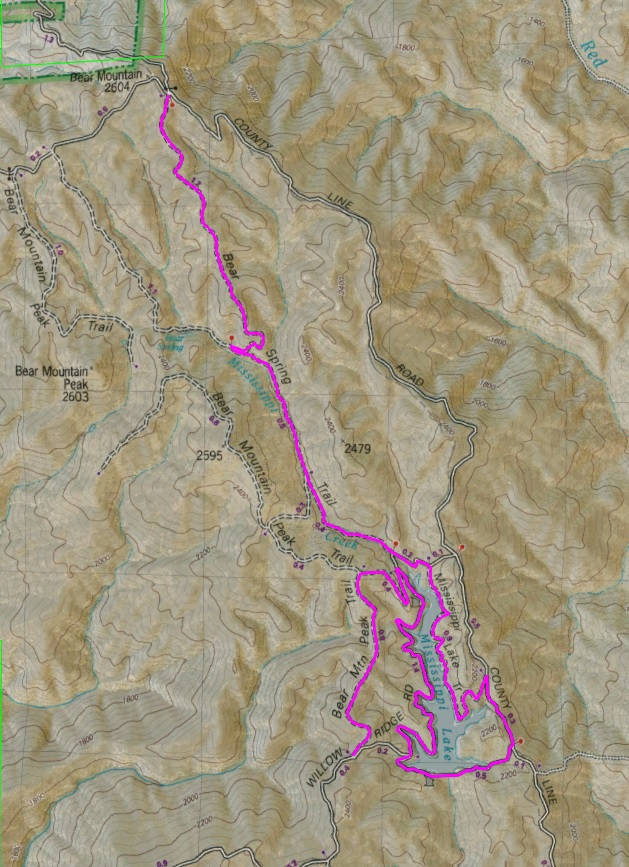 2018 Hard Coe're 100 (and 60 and 40) Saturday, October 6-bear-spring-deviant.jpg