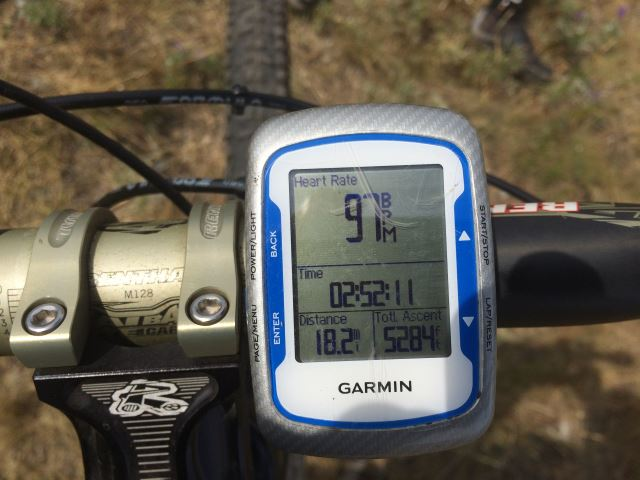 2015 Miles, Highs, and Lows-bear_5.jpg