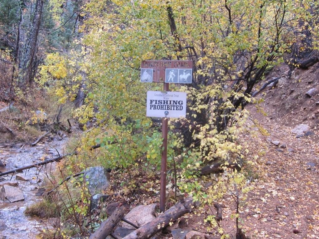 Bear Creek  Cutthroat Trout - Trail Changes might be coming-bear_creek_no_fishing.jpg