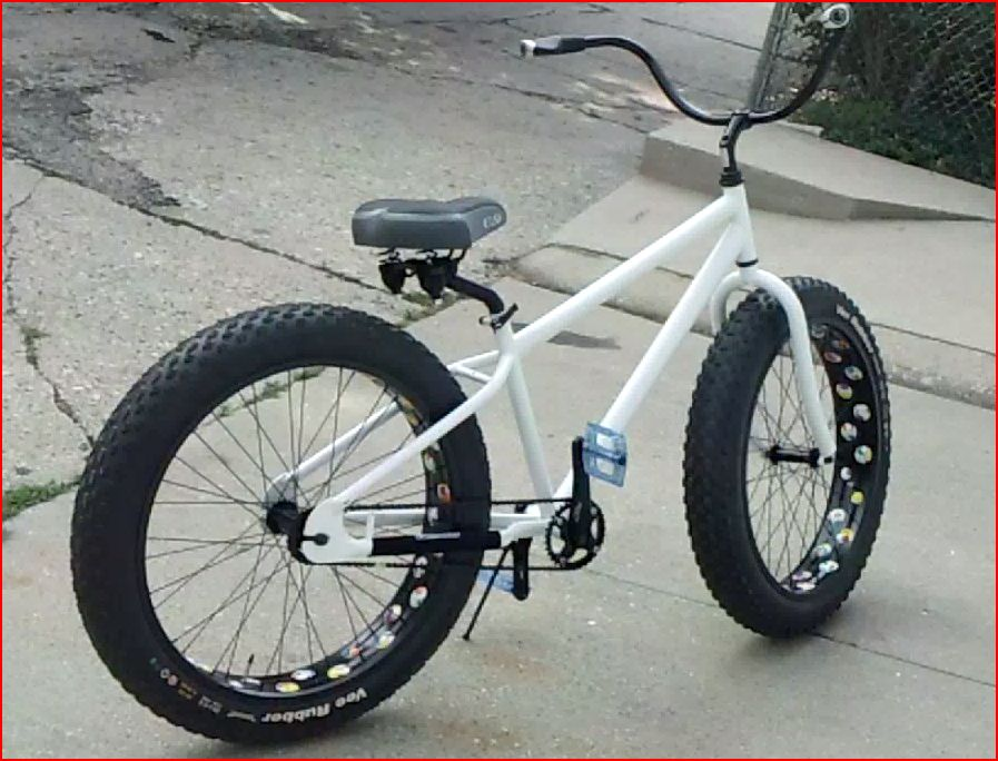 Mongoose Beast Build-beast4.jpg