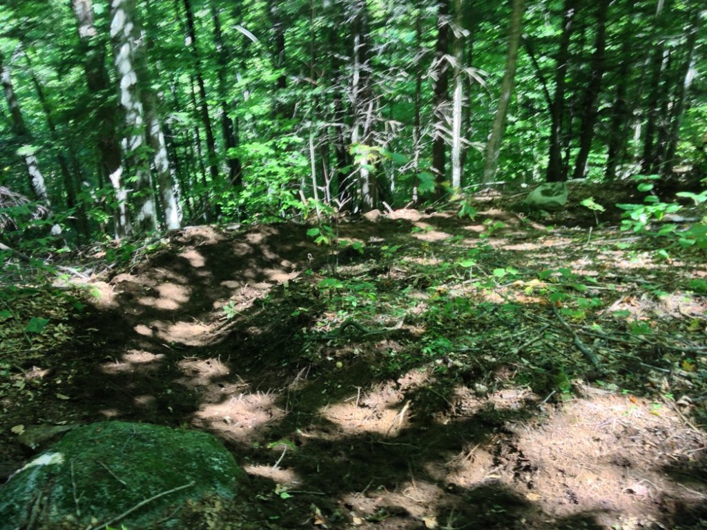 Sept 15th - Trail Day at Page Hill-berm.jpg