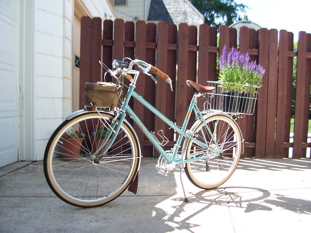 NorCal Spouse's Bikes-betty-foy.jpg