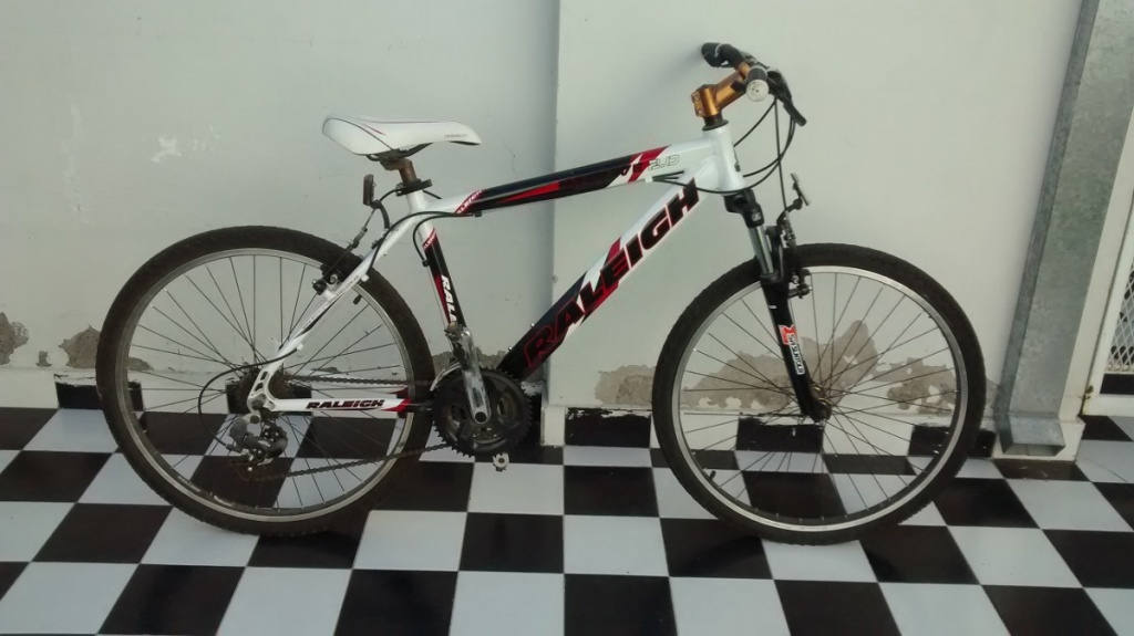 -bicicleta-raleigh-mojave-20-767221-mla20732121465_052016-f.jpg