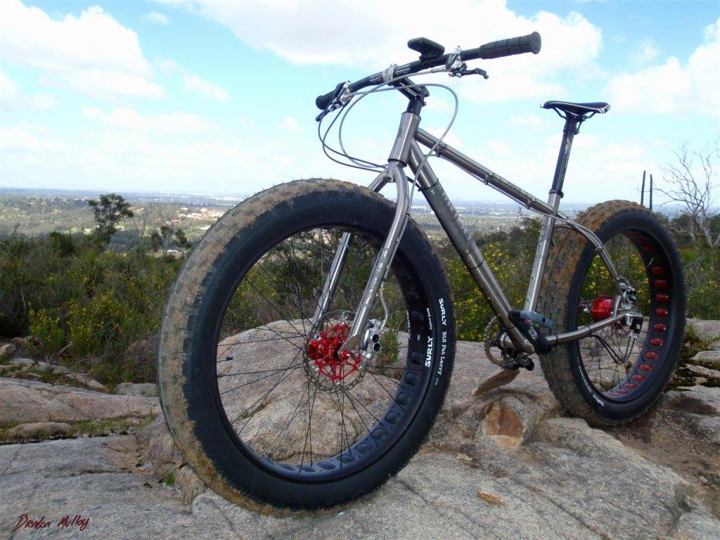 Bike specs with pics-big-sista_3-large-.jpg