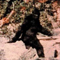 Name:  bigfoot1.jpg Views: 956 Size:  56.4 KB