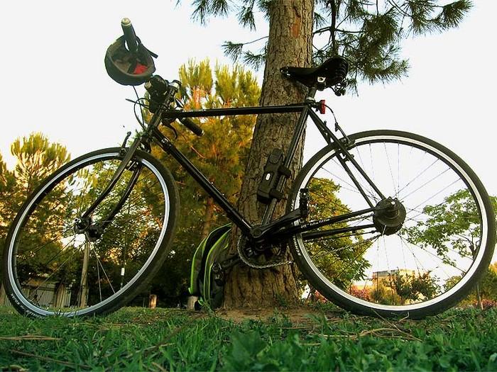 Beer And Bikes: Picture thread-bigwood1.jpg