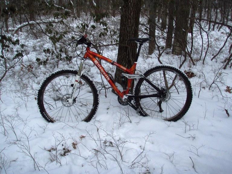a cold ass slippery ride-bike-1-9-11-004.jpg
