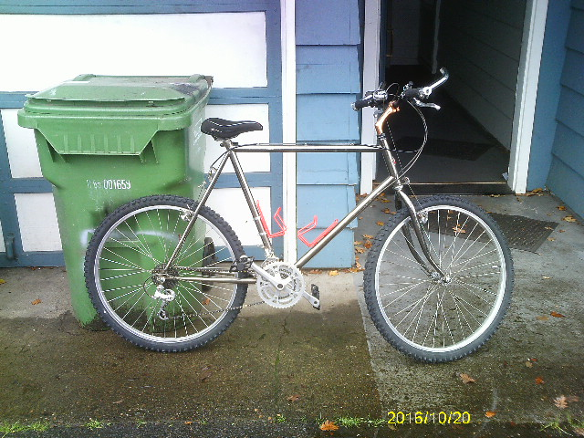 What did you do FOR your bike today??-bike-273.jpg