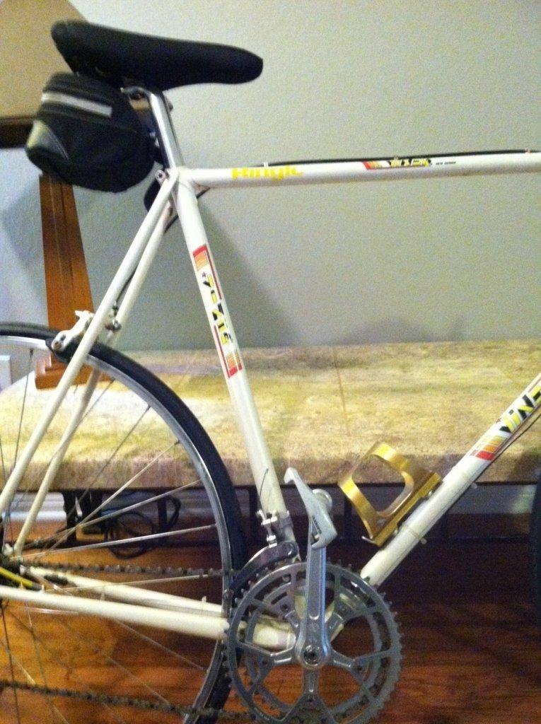 Viner Purchase-bike-back-end.jpg