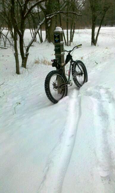 Daily fatbike pic thread-bike-course.jpg