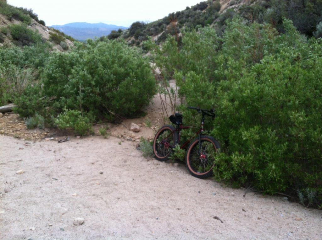 Fat Biking and health-bike-sandy-wash.jpg