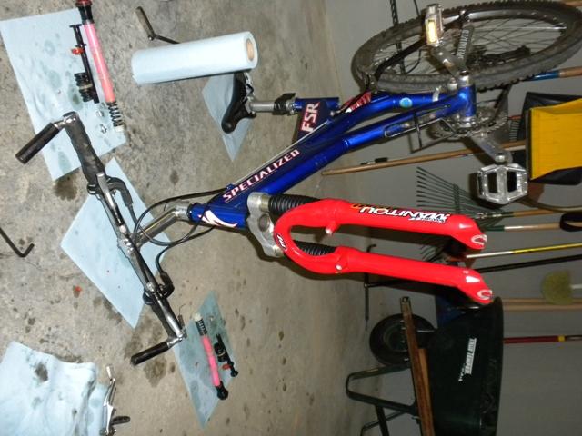 Need your opinions: Wings springs vs Elastomers-bike.jpg