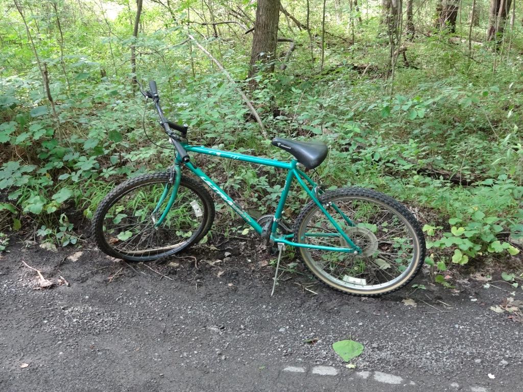 The Abandoned Vehicle Thread-bike.jpg