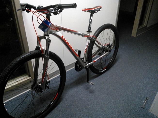 Revel Thread-bike.jpg