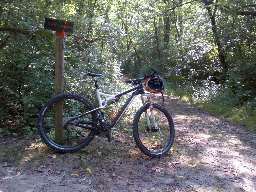 clydes that ride a 29er.... what are you riding?-bike.jpg