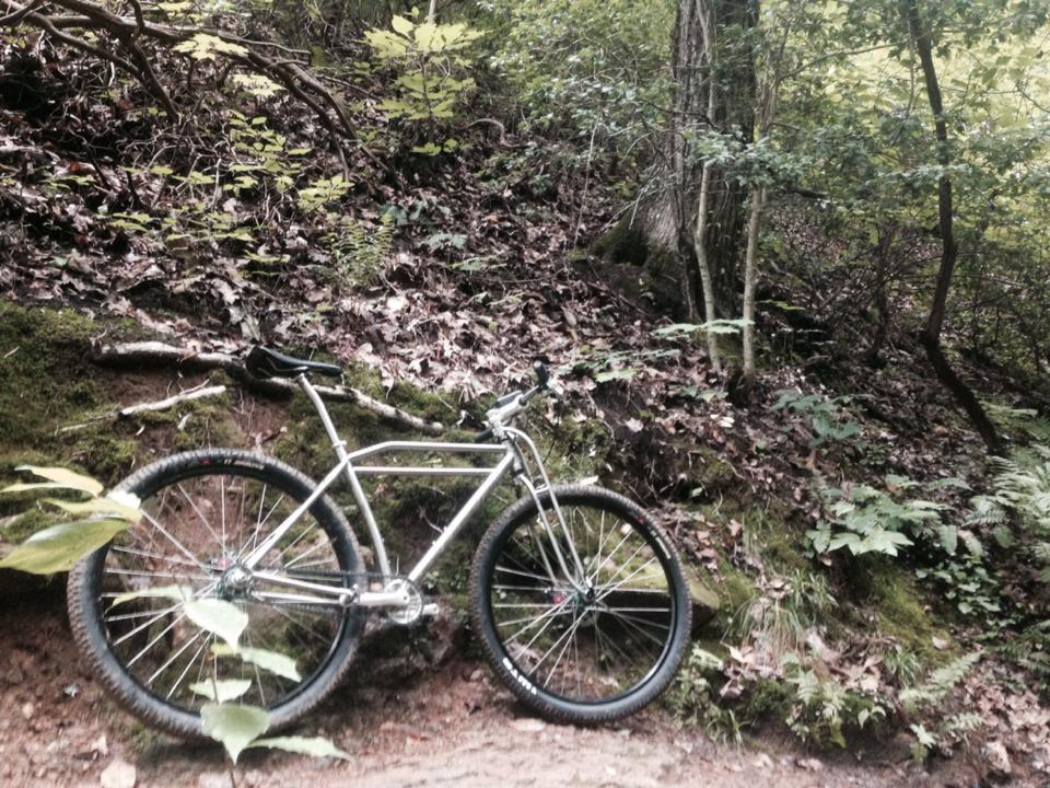 Post your Titanium 29ers-bike-%40-paris-mountain.jpg