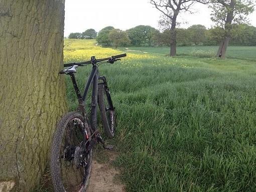 Name:  bike photos to rotate.jpg Views: 3861 Size:  102.0 KB