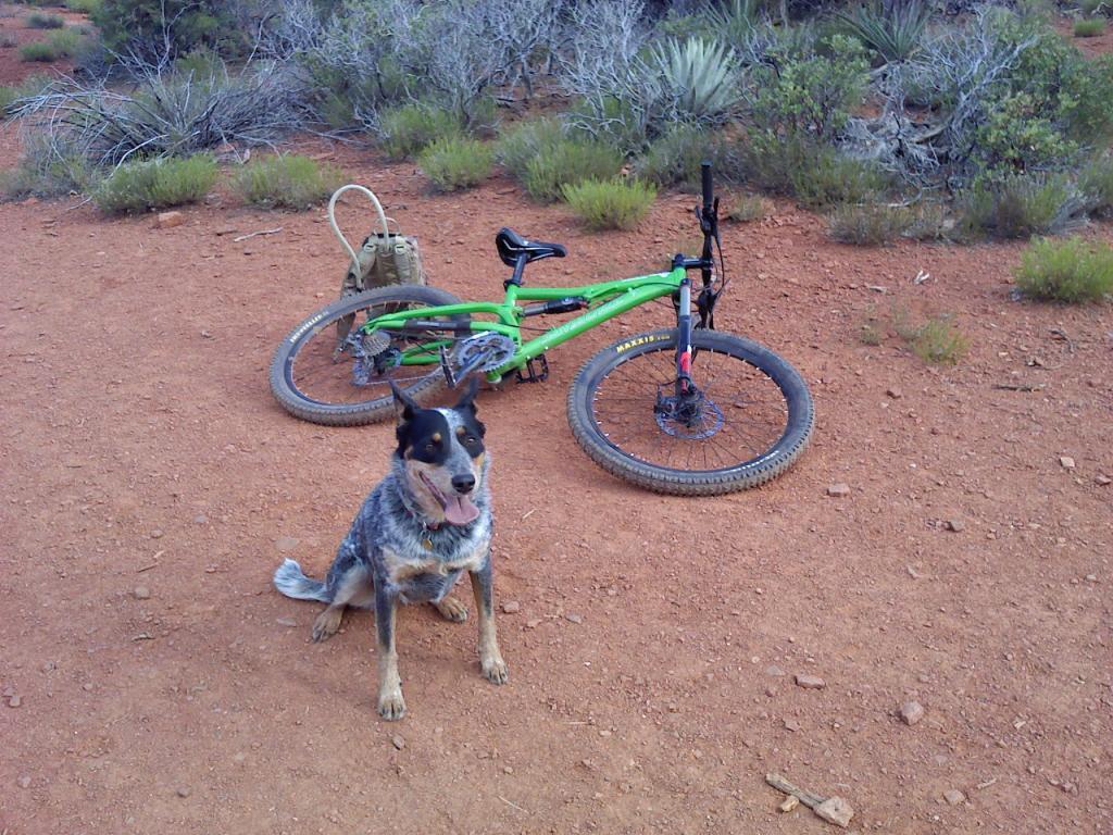AZ Photo Friday 9-9-11-bike-pics-004.jpg