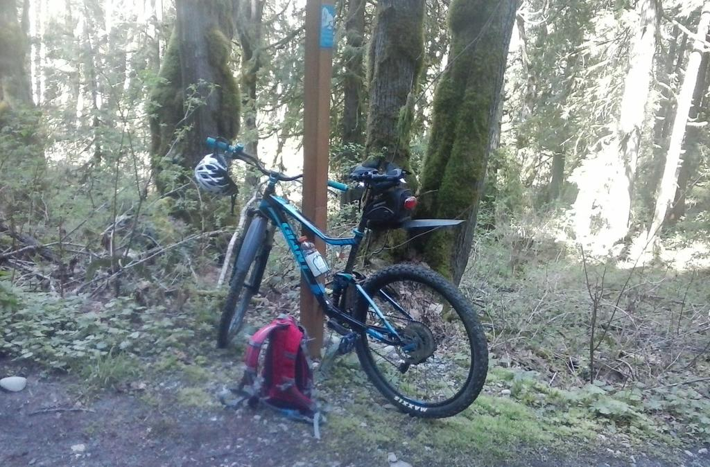 Bike + trail marker pics-bike-trail-sign.jpg