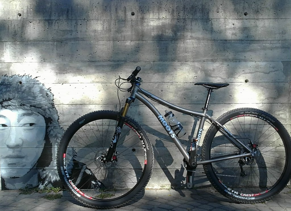 Post Pictures of your 29er-bike-face-001.jpg