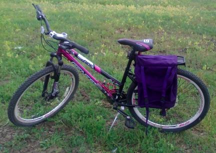 Name:  BikePannierCraft4 2014-06-27.jpg Views: 3832 Size:  92.7 KB