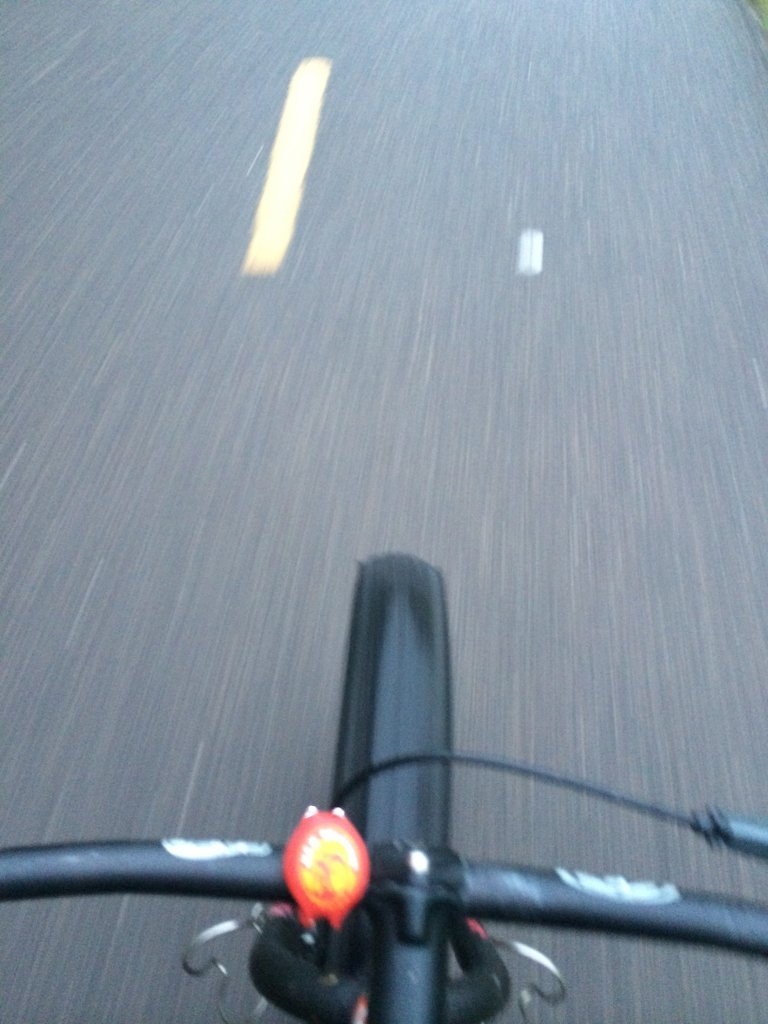 How many use a bike path on their commute?  (PICS)-bikepath1.jpg