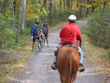 Name:  Bikes and horses.jpg