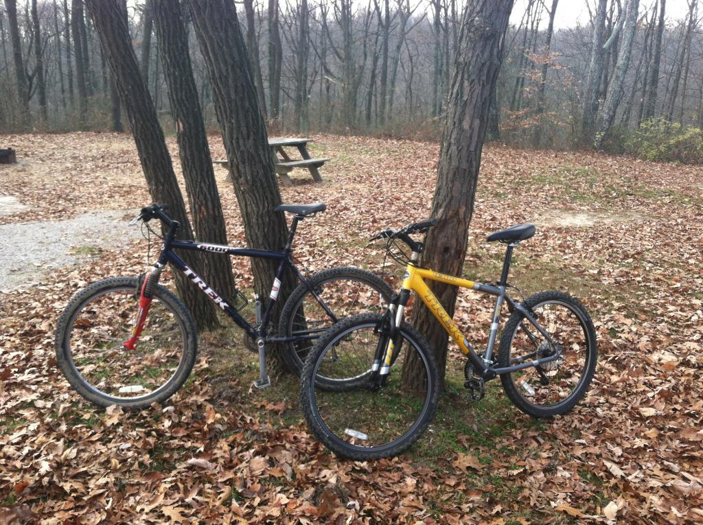 29ers In The Fall-bikes.jpg
