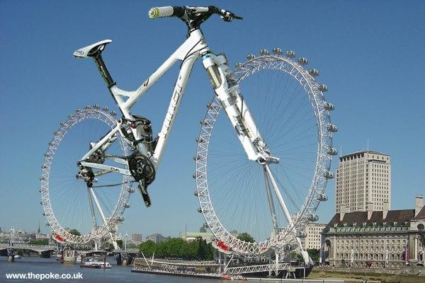 Had to share it.-bikewheel.jpg