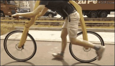 WOW!!! What A Bike!!!-bikewtg.jpg