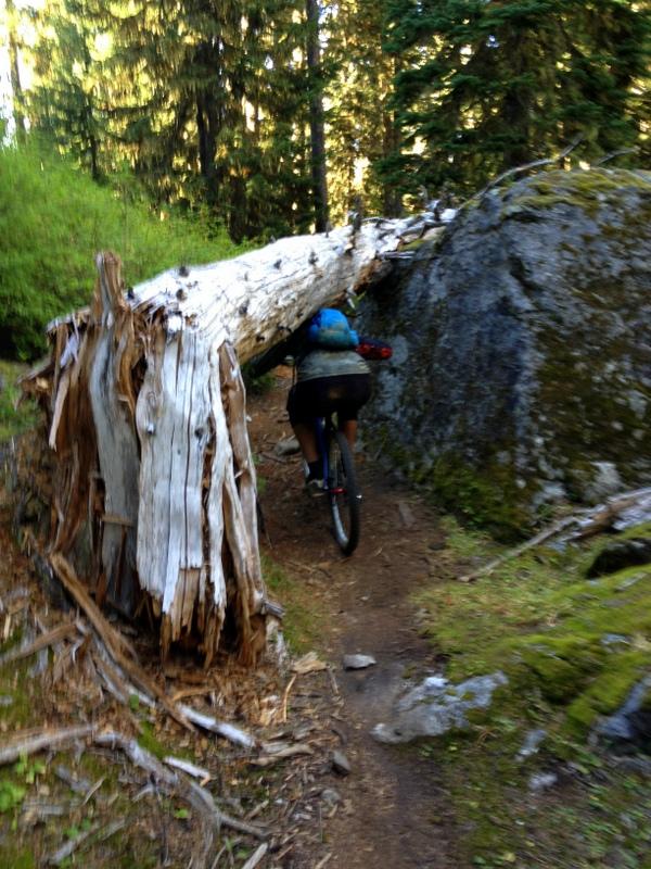 Big and Tall Action Pics & Vids-biking-180.jpg